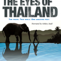 For the Love of Elephants… The Eyes of Thailand