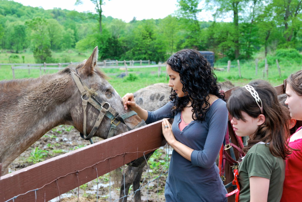 Catskills Farm Animal Sanctuary