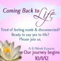 {Gentle Powerful Souls} Jodi Chapman & The Coming Back to Life Ecourse