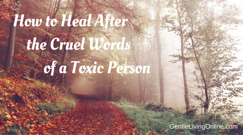 how-to-heal-after-the-cruel-words-of-a-toxic-person-pic